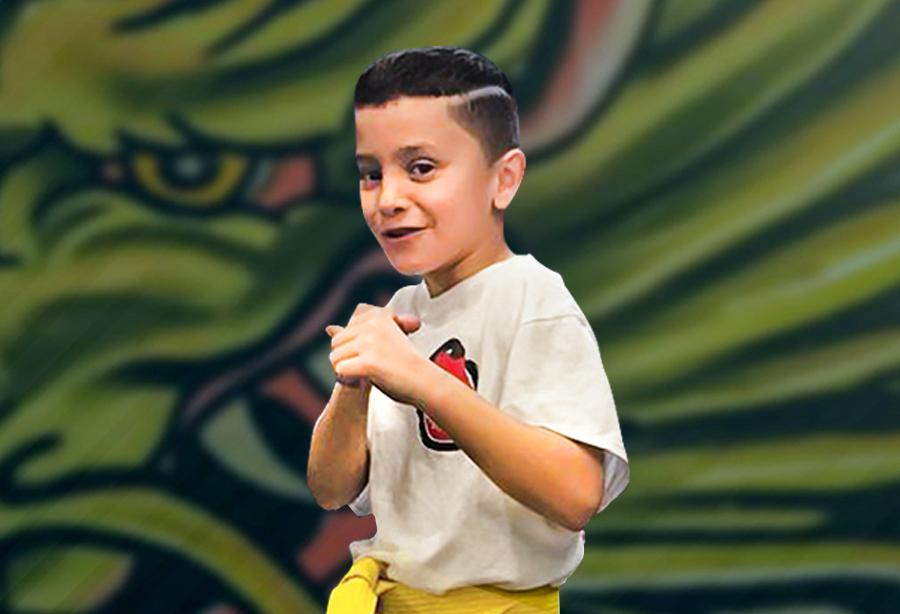 Header Virtual kids martial arts